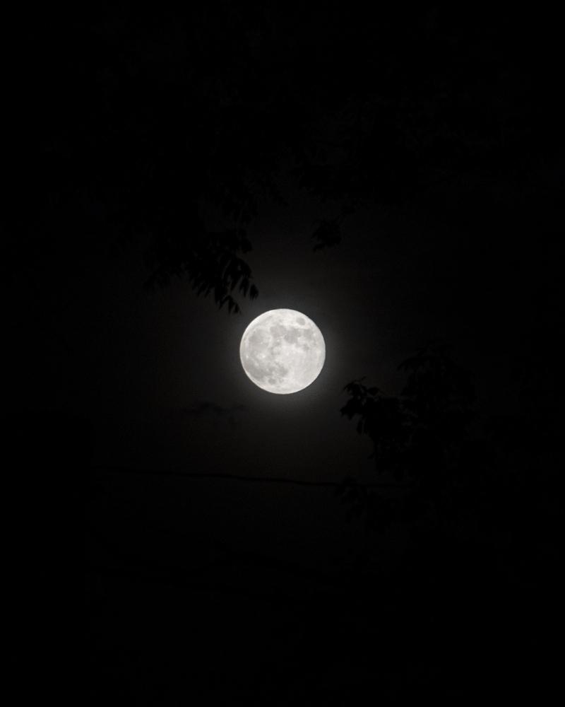 Moon 6-1_low