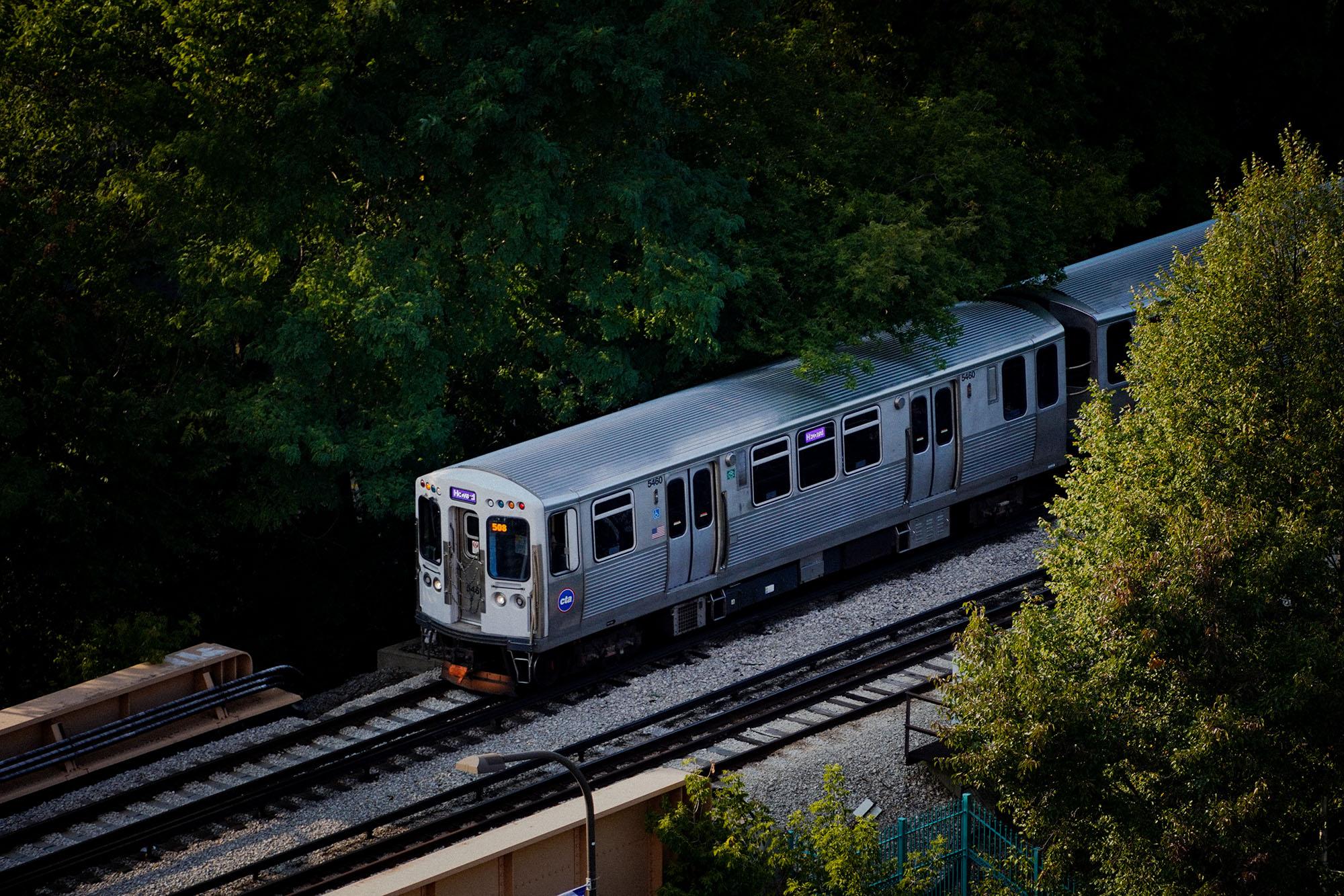 """""""L"""" train"""